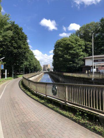 城北公園横を流れる石神井川