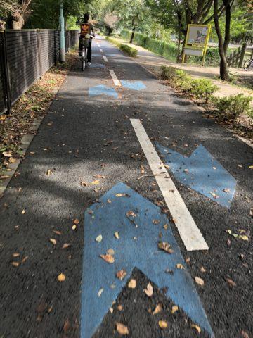 季節の移り変わり-NeoPRIMATO-26-多摩湖自転車道