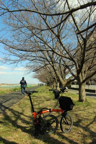 2020年の自転車ほか活動-03-brompton